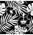 tropical pattern 003 vector image vector image