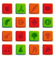 buttons of vegetables and fruit vector image