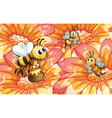 Bees collecting honey vector image vector image