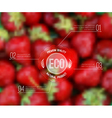 blurred background with strawberry and eco label vector image vector image