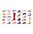 cartoon footwear elegant and casual shoes vector image