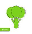 flat green broccoli market logo with black contour vector image