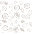 Seamless exotic fruit pattern vector image vector image