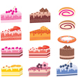 cakes pieces vector image
