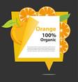 banner orange organic vector image