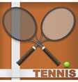 Clay court and rackets vector image