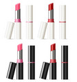 lipstick mockup set with black and white shell vector image