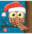 Owl in a Santa hat vector image