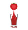Tomato squeeze into glass Fresh tomato juice vector image vector image