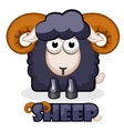 cute cartoon square black Sheep vector image vector image