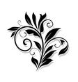 Elegance floral element vector image vector image