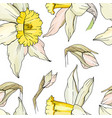 seamless floral decorative pattern with white vector image vector image