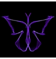 Shiny abstract violet butterfly vector image vector image