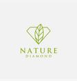 nature diamond logo diamond with leaf logo vector image vector image