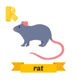 Rat R letter Cute children animal alphabet in vector image vector image