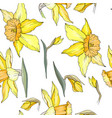 seamless floral decorative pattern with yellow vector image
