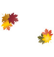 autumn leaves in groups background vector image