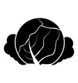 cabbage icon black color flat style simple image vector image