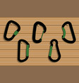 climbing carabiners set on wooden vector image