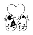 cute bull cow heads heart love vector image