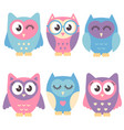 icons of cute owls isolated on white vector image vector image