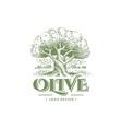 olive label emblem design tree illustration vector image vector image