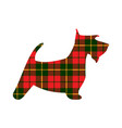 scotch terrier tartan texture plaid red pattern vector image