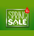 spring sale concept lettering shopping banner vector image