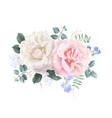 vintage floral banner with garden rose vector image vector image