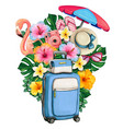 watercolor summer symbols luggage and tropical vector image