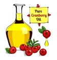 colorful of Cranberry oil 2 vector image vector image