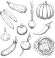 Farm vegetables sketches for agriculture design vector image vector image