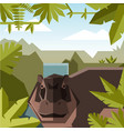 flat geometric jungle background with hippopotamus vector image vector image