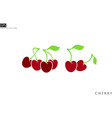 fresh cherries with leaves vector image vector image