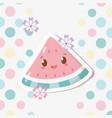 fresh watermelon fruit kawaii characters vector image vector image