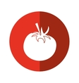 tomato juicy vegetable icon red circle vector image vector image