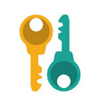 two keys icon image vector image