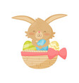 adorable little bunny sitting in basket with vector image