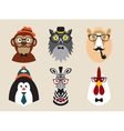 Cute fashion Hipster Animals pets set of vector image vector image