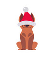 cute funny dog in santa hat symbol xmas and vector image vector image