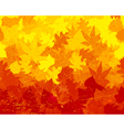 Distressed autumn leaves wallpaper vector image vector image