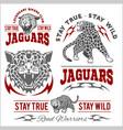 jaguar custom motors club t-shirt logo on vector image vector image