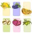 Set of hand drawn fruit labels vector image