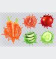 aloe juice carrots grapefruit pomegranate vector image vector image