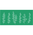 art hand drawn branches with leaves collection vector image vector image