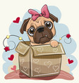 birthday card with a cute cartoon pug dog in the vector image vector image