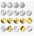 Bolts And Screws Isolated vector image