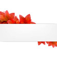 Borders Of Tulips With Banner vector image vector image