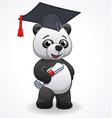 cartoon panda graduating vector image vector image