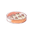 dim sum isolated icon vector image vector image